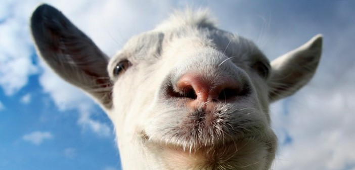 [Test] Goat Simulator : Nightmare Edition BÊÊÊÊÊÊÊÊÊÊÊÊÊÊÊÊÊ