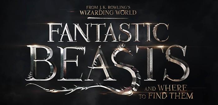 Premières photos officielles des Animaux Fantastiques !