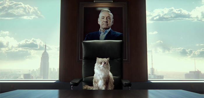 Neuf Vies dévoile son teaser avec Kevin Spacey en… chat !