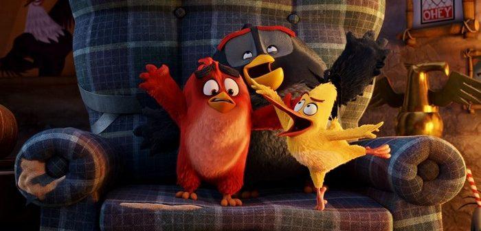 [Sortie Blu-ray] Angry Birds : tout est bon dans le cochon ou presque