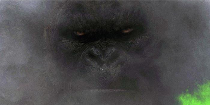 Monstres à l'horizon dans le nouveau trailer — Kong Skull Island