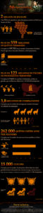 Neverwinter_infographie_1