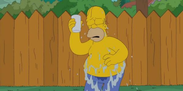 Ice Bucket Challenge : Homer Simpson s'y colle