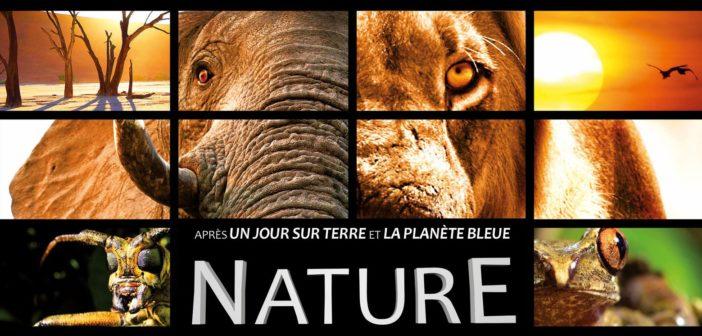Nature prêts à vous perdre en Afrique