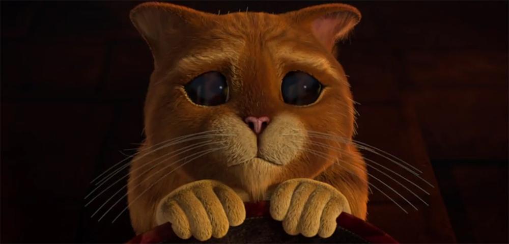 Прикольные картинки кота из шрека, фнаф приколы русском