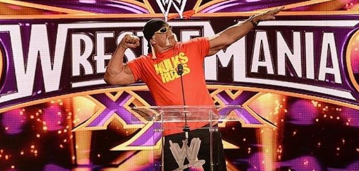 Hulk Hogan rayé de WWE 2K16