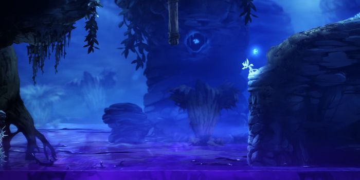 Ori and the Blind Forest Definitive Edition flânera encore un peu en forêt...