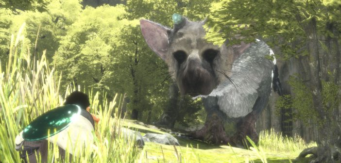 Quelques images pour The Last Guardian