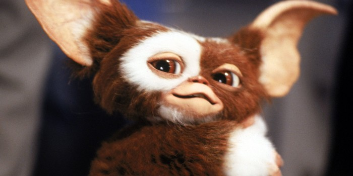 Gremlins 3 : la suite est en développement avec Chris Colombus