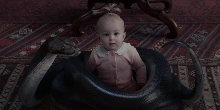Les Orphelins Baudelaire Le somptueux Laboratoire aux Serpents…