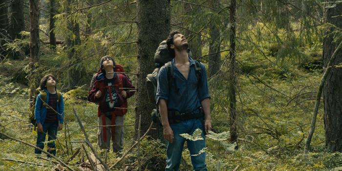 Dans la forêt critique