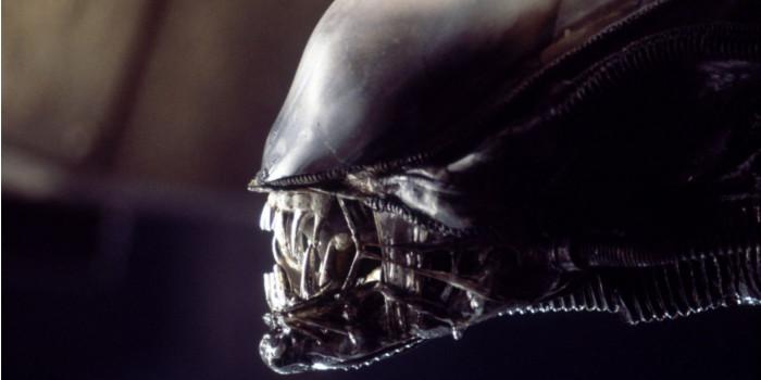 Alien 5 : fin du voyage pour l'équipage selon Ridley Scott