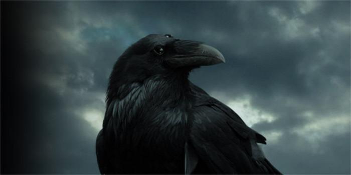 [Comic-Con 2017] Game of Thrones : la corneille à trois yeux aura un rôle à jouer dans la saison 7