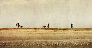 [Critique Livre] Les terres dévastées : sombre, dérangeant, captivant