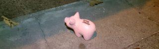 [Gamescom 2017] Péripéties d'une gameuse, DLC 2 - débusquer un cochon
