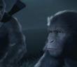 La planète des Singes, un nouveau jeu pour nos amis les bêtes !