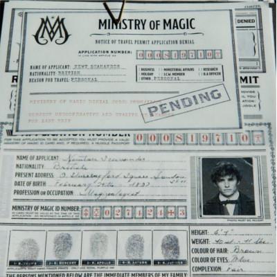 Les Animaux Fantastiques 2 : visa en attente de validation pour Newt sur une image
