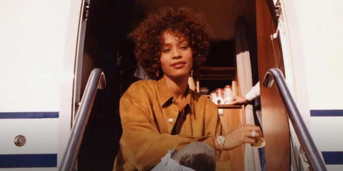 Cannes 2018 - Critique Whitney : Houston, on n'a pas de problème
