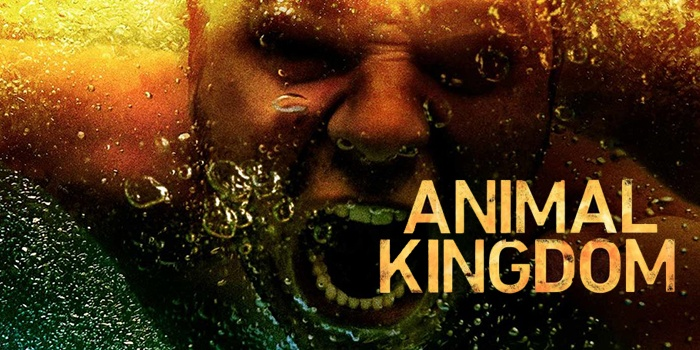 Critique Animal Kingdom saison 3 épisode 1 : back to business !