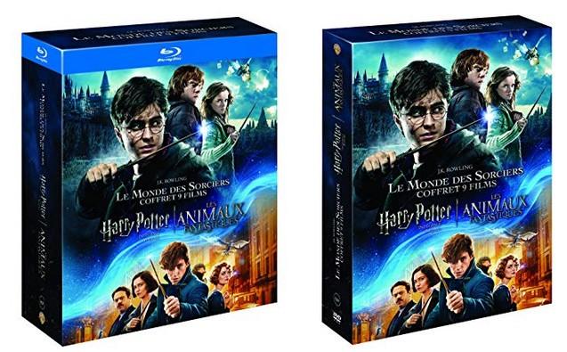 Concours l'intégral Harry Potter + Les Animaux Fantastiques : 2 coffrets blu-ray et 1 coffret DVD à gagner !
