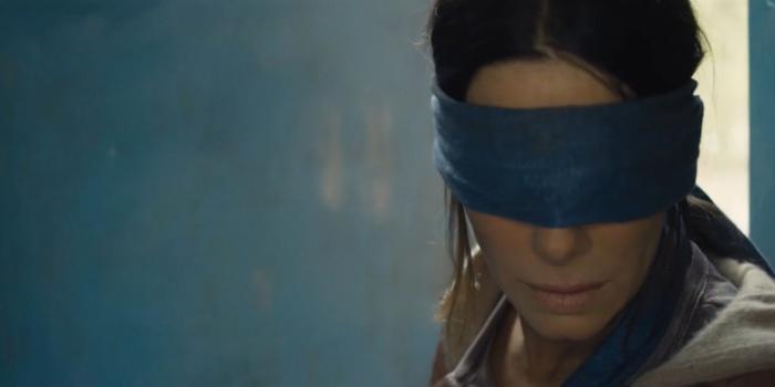 Critique Bird Box : un film qui a du mal à prendre son envol