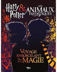 Critique Harry Potter aux Animaux fantastiques, pas de magie ici...