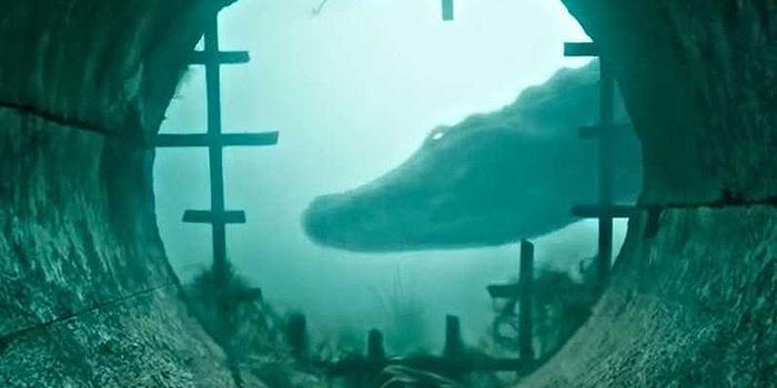 Crawl : Alexandre Aja terrifie avec des crocodiles dans le trailer