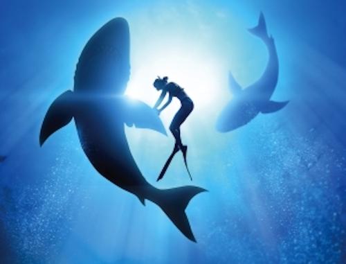 Avignon-2019-Jirai-danser-avec-les-requins2