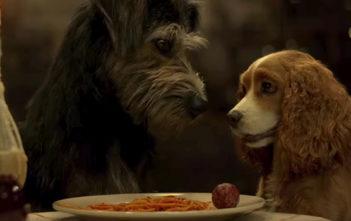 La Belle et le Clochard : le teaser Disney+ qui a du chien
