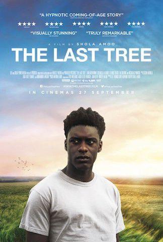 Critique The last tree