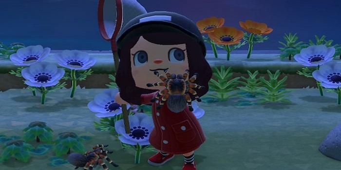 Animal Crossing : New Horizons, ces insectes / poissons qui disparaissent début mai !