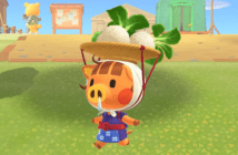 Animal Crossing New Horizons, guide ultime des navets