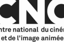 Le CNC autorise 31 films à sortir chez nous en VOD