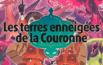 Test Pokémon Épée / Bouclier, Les terres enneigées de la Couronne, DLC givré
